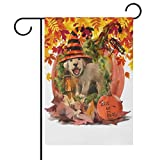Naanle Trick or Treat Halloween Holiday Polyester Garden Flag 28 x 40 Double Sided, Cute Dog in The Halloween Pumpkin House with Autumn Leaves Decorative House Flag for Party Home Outdoor Decor