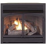 ProCom FBNSD400T-ZC Dual Fuel Ventless Gas Fireplace Insert, 29.5' H x 29.1' W x 15.6' D, Black