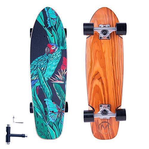 FlyBee&SKOCHO Complete-Standard Cruiser-Skateboards for Teens Adults-Beginners - Mini...