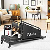 PETSITE Small Dog Treadmill, Pet Running Machine for Indoor Exercise with 1.4 Inch LCD Screen and Remote Control, 200 LBS Capacity