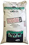 Jacklin Seed - 80/20 Blend - 80% Kentucky Bluegrass, 20% Perennial Ryegrass | Certified Grass Seed (5-50 lbs) (25 lbs (10,000 sq ft))