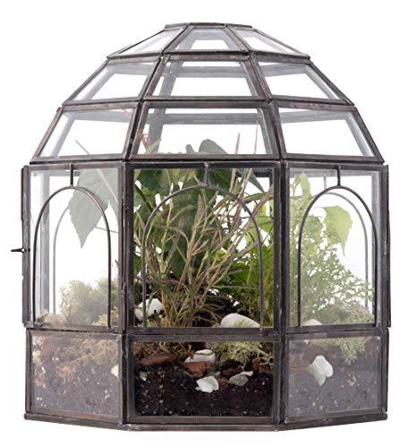 Urban Born Birdcage Large Glass Terrarium — 10' x 9' x 9' (Black...