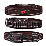 Tuff Pupper Heavy Duty Dog Collar with Handle | Ballistic Nylon