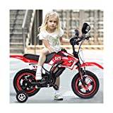 Kids' Motorcycle Bikes with Flash Assist Wheel,High Carbon Steel Frame,Fat Tire Freestyle Bicycle 12'' for Kids 2-4 Years Old,Sanycool (Red)