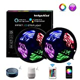 Smart LED Strip Lights 33feet, Hedynshine Music RGB Strip Lights SMD 5050 300pcs Color Change Strip Lights with Remote,Work with ALEXA/Google Home,Led Strip Lights WIFI