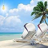 A19 Led Bulb 100W Daylight,Light Therapy Lamp Bulb,Natrual Sunlight Bulb,LED Full Spectrum Light Bulb,Enjoy The Sun at Home Happy Mood Eye-Care E26 Bulb 13W Equivalent 100W 6000K 2 Pack