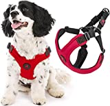 Gooby Dog Harness - Red, Medium - Escape Free Sport Patented Step-in Neoprene Small Dog Harness - Perfect on The Go Four-Point Adjustable Harness for Small Dogs or Cat Harness