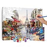 Bougimal Pintar por Numeros Adultos, DIY Pintura por números con Pinceles y...