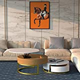 MGH Round Coffee Table Set of 2, Lift-Top Wood Coffee Table Lifts up,Nesting Coffee Table with Storag, Rotatable Drawers for Living Room, Office, Balcony (White)
