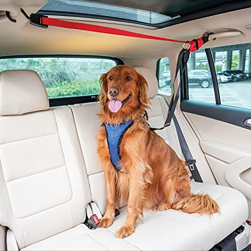 PetSafe Happy Ride Dog Zipline - Back Seat Leash,...