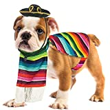 Skeleteen Mexican Serape Dog Costume - Cinco de Mayo Poncho and Sombrero Costumes for Pets (Size M)