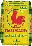 Italpollina Sac de 25 kg d'engrais biologique