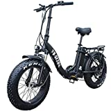 vtuvia 20' Folding Electric Bike for Adults, Fat Tires E-Bike for Women Men, 750W Motor 13AH Snow Beach Electric Bicycle with Removable Battery