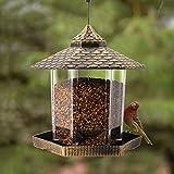 Twinkle Star Wild Bird Feeder...