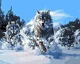 Fuumuui Peinture Au Numéro Kits, Numéro d'art, Tableau à Dessin,Peinture par numéros,Peinture à l'huile par numéros, Peintures Acryliques pour Enfants Adultes sans Cadre -Wolves 40 x 50 CM