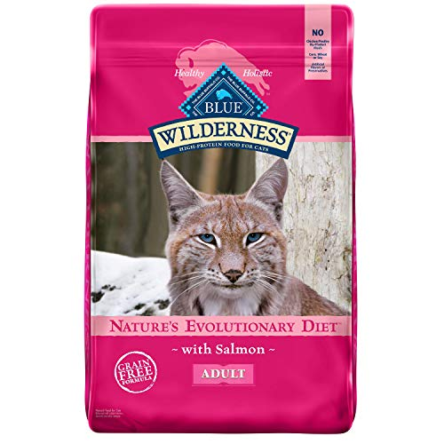 Product Image 1: Blue Buffalo Wilderness High Protein, Natural Adult Dry Cat Food, Salmon 11-lb