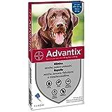 Bayer advantix x chiens de plus de 25 kg.