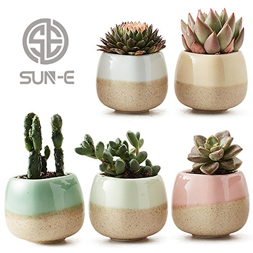 5 in Set 2.2 Inch Container Planter Ceramic Flowing Glaze Five Color Base
