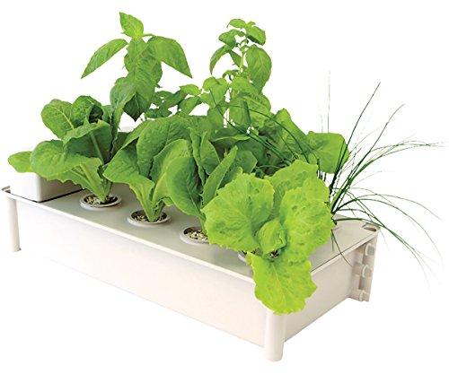 Hydrofarm GCSB Box Kit Hydroponic Salad Garden