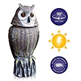 Lijo Solar Powered Rotating Head Owl Decoy - New and Improved 2020 Animal Scarecrow with Laser Eyes and Sound - Bird Repellent, Garden Pest Control Statue - Waterproof, Runs on Rechargeable Batteries
