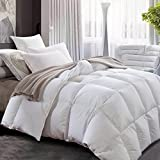 Luxurious All Seasons White Goose Down Comforter-Solid White Hypo-allergenic Duvet Insert 1000 Thread Count , 700+Fill Power 100% Cotton Shell Down Proof With Tabs ( King, White / Lightweight Warmth )