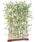 Plante Artificielle Haute Gamme Spécial extérieur/Haie Artificielle Bambou Coloris Vert - Dim : 160 x 35 x 110 cm