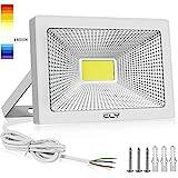 Projecteur LED Extérieur 50W, CLY 6500K Éclairage de Sécurité...