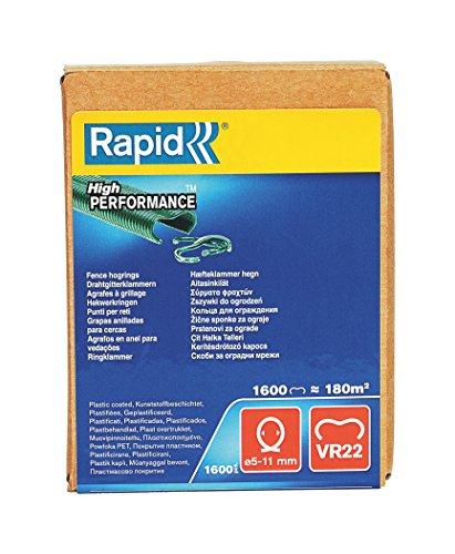 Rapid 40108811 Punti per Reti, Verde