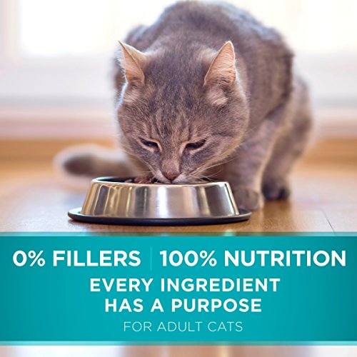 Product Image 9: Purina ONE Natural Dry Cat Food, Tender Selects Blend With Real Salmon - 22 lb. Bag