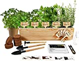 Hand-Mart 5 Herb Seeds Windowsill Herb Garden Kit, Basil Parsley Rosemary Thyme Mint, Including Everything-Soil, Pots, Tools, Pruner, Sprayer, Labels, Planter, DIY Gardening Gift for Kids Adults