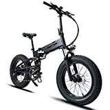 Mukkpet Fat Bear 20in Full Suspension Folding All Terrain Fat Tire Electric Bicycle 48V 500W 11.6AH Lithium Battery Snow Electric Bike Adults EBike with I-PAS 8 Speed E-Bike (Black, Plus)