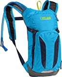 CamelBak Mini M.U.L.E. Kids Hydration Backpack, 50 oz, Azalea/Aruba Blue