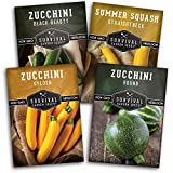 Survival Garden Seeds Zucchini & Squash Collection Seed Vault - Non-GMO Heirloom Seeds for Planting Vegetables - Golden, Round, Black Beauty Zucchinis and Straight Neck Squash