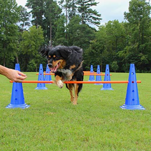 Lord Anson Dog Agility Hurdle Cone Set - Canine...