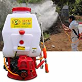 BoTaiDaHong 4-Gallon Backpack Sprayer Agri-Cultural Mist Dus-TER Gasoline Powered PES-ticide Gardening Professional Knapsack Sprayer Plants Pump Pe-st Control CDI Ignition System 20L