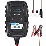 Directtyteam Chargeur de Batterie Automatique Intelligent Réparateur 6 V 12 V 1 A, Pour Automobile...