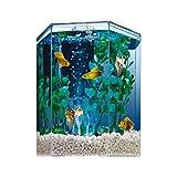 Tetra Bubbling LED Aquarium Kit 1 Gallon, Hexagon Shape, With Color-Changing Light Disc