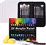 Acrylic Paint Set, 48 Piece Professional Painting Supplies Set, Includes 24 Acrylic Paints, 16 Painting Brushes with Case,Paint Knife,Art Sponge and Canvas, for Artists, Students and Kids