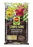Compo Sana Universal de Calidad para macetas con 12 semanas de abono para Plantas de Interior, terraza y jardn, Substrato de Cultivo, 10 L