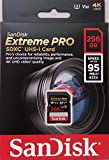 SanDisk Extreme PRO - Tarjeta de memoria SDXC de 256 GB, hasta 95 MB/s, Class 10 y U3 y V30