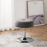 Art Leon Vanity Stool, Modern Large Round Swivel Adjustable Makeup Vanity Benche and Stool for Bathroom Bedroom, Grey