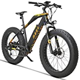 MZZK 500W Electric Mountain Snow Bike with 26 Inch Fat Tires and Removable 48V 13Ah Li-on Battery (Black)