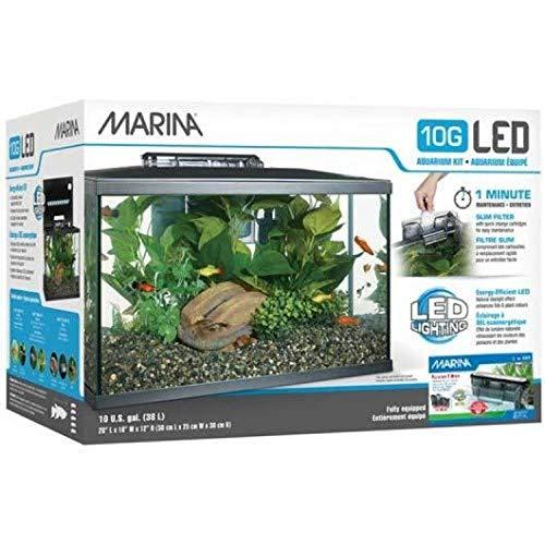Marina 15256 - Kit de Acuario con Iluminación LED 10G, 38 L