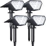 Biling Solar Spotlights...image