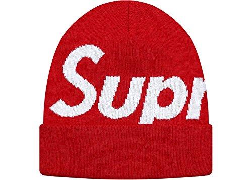 Supreme Big Logo Beanie シュプリーム ビッグロゴ ビーニー ニット帽 ニットキャップ