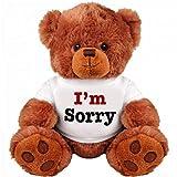 I Am Sorry Teddy Bear - Cute and Cuddly : Funny Teddy Bear Couple Gift : Romantic Medium Teddy Bear Stuffed Animal