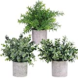 Mini Potted Plants Artificial Eucalyptus Boxwood Rosemary Greenery in Pots Faux Potted Herbs Small Houseplants 8.3'-9' Tall for Indoor Greenery Tabletop Décor Centerpiece 3 Pack