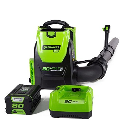 51LeTXuRpgL - The 7 Best Commercial Backpack Blowers That Make Leaf Clean-Up Easy During Fall