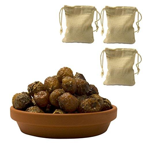 Premium Waschnüsse (Sapindus mukorossi) 1kg mit 3...