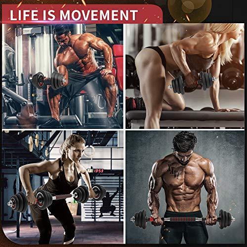 51M0YtLgWTL - Home Fitness Guru
